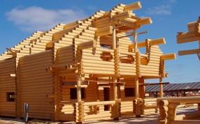 Рекомендации по строительству домов из дерева